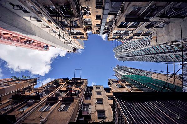vertical-horizon-7